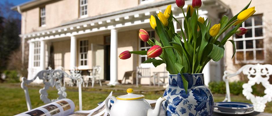tulips-940x400